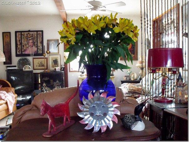 01 766 Flowers & stuff at Berta's Yarnell AZ (1024x768)