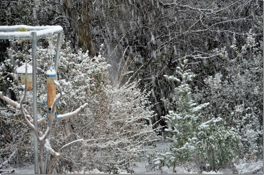 01 Snowing Yarnell AZ (1024x678)