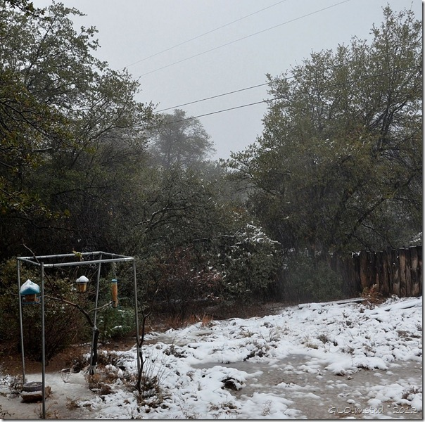 02 Snowy Yarnell AZ (1024x1018)