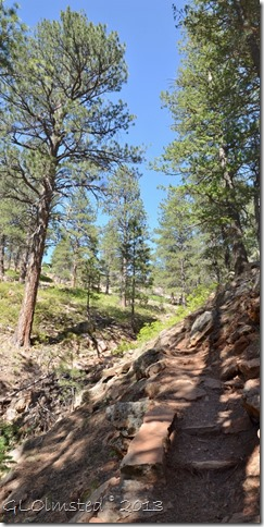 Cliff Spring trail North Rim Grand Canyon National Park Arizona
