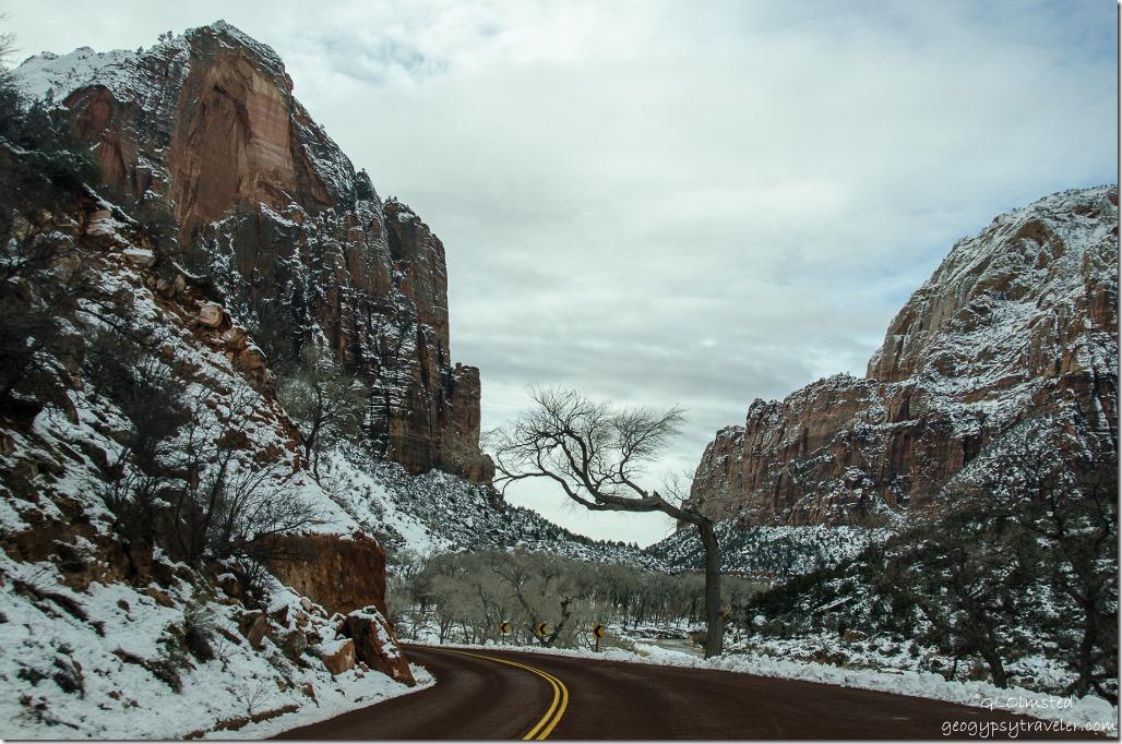 Snowy Virgin River Canyon Zion National Park Utah